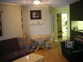 Photo 7: : House for sale (Terra Losa)  : MLS®# E3073867