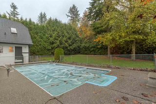 """Photo 19: 2835 COUNTRY WOODS Drive in Surrey: Grandview Surrey House for sale in """"COUNTRY WOODS"""" (South Surrey White Rock)  : MLS®# R2011883"""