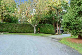 "Photo 20: 13538 20 Avenue in Surrey: Crescent Bch Ocean Pk. House for sale in ""Ocean Park"" (South Surrey White Rock)  : MLS®# R2012213"