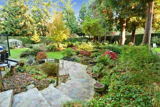 "Photo 17: 13538 20 Avenue in Surrey: Crescent Bch Ocean Pk. House for sale in ""Ocean Park"" (South Surrey White Rock)  : MLS®# R2012213"