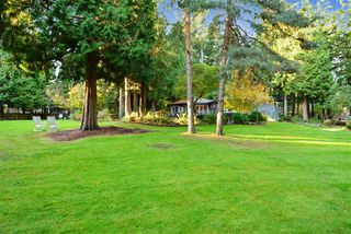 "Photo 2: 13538 20 Avenue in Surrey: Crescent Bch Ocean Pk. House for sale in ""Ocean Park"" (South Surrey White Rock)  : MLS®# R2012213"