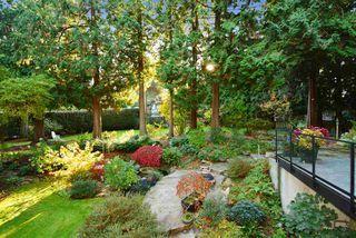 "Photo 16: 13538 20 Avenue in Surrey: Crescent Bch Ocean Pk. House for sale in ""Ocean Park"" (South Surrey White Rock)  : MLS®# R2012213"