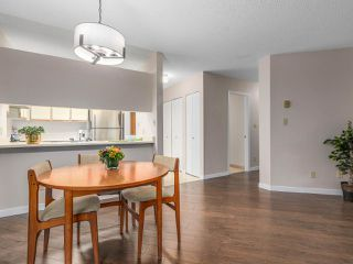 "Photo 7: 203 3191 MOUNTAIN Highway in North Vancouver: Lynn Valley Condo for sale in ""Lynn Terrace II"" : MLS®# R2133788"