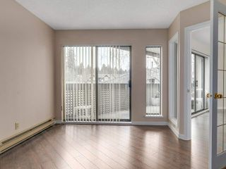"Photo 14: 203 3191 MOUNTAIN Highway in North Vancouver: Lynn Valley Condo for sale in ""Lynn Terrace II"" : MLS®# R2133788"