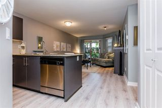 Photo 4: 102 8915 202 Street in Langley: Walnut Grove Condo for sale : MLS®# R2192394