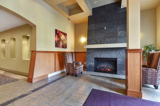 "Photo 3: 305 33318 E BOURQUIN Crescent in Abbotsford: Central Abbotsford Condo for sale in ""Nature's Gate"" : MLS®# R2217570"