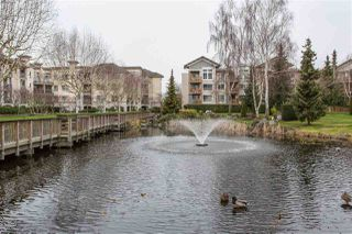 "Photo 17: 108 5500 ANDREWS Road in Richmond: Steveston South Condo for sale in ""SOUTHWATER"" : MLS®# R2237112"