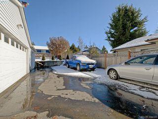 Photo 15: 3441 Seaton St in VICTORIA: SW Tillicum House for sale (Saanich West)  : MLS®# 779665
