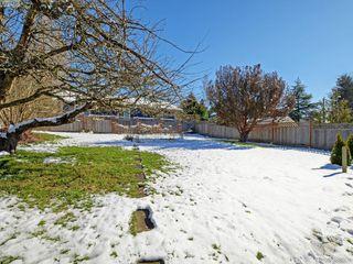 Photo 16: 3441 Seaton St in VICTORIA: SW Tillicum House for sale (Saanich West)  : MLS®# 779665