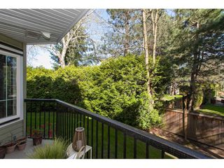 "Photo 3: 104 20881 56 Avenue in Langley: Langley City Condo for sale in ""Robert's Court"" : MLS®# R2260897"