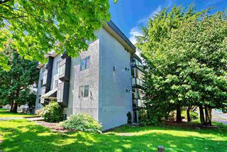Photo 10: 3 25 GARDEN Drive in Vancouver: Hastings Condo for sale (Vancouver East)  : MLS®# R2275368