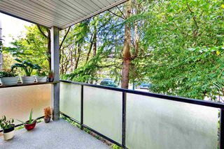 Photo 5: 3 25 GARDEN Drive in Vancouver: Hastings Condo for sale (Vancouver East)  : MLS®# R2275368