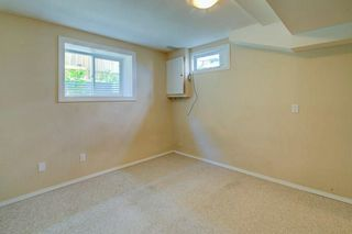 Photo 24: 244 BEDDINGTON Drive NE in Calgary: Beddington Heights House for sale : MLS®# C4195161