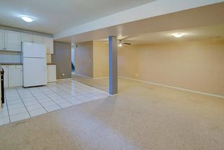 Photo 21: 244 BEDDINGTON Drive NE in Calgary: Beddington Heights House for sale : MLS®# C4195161