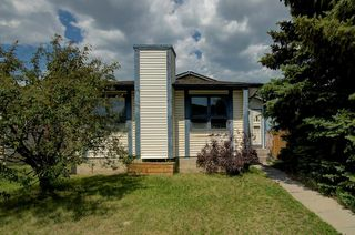Photo 1: 244 BEDDINGTON Drive NE in Calgary: Beddington Heights House for sale : MLS®# C4195161