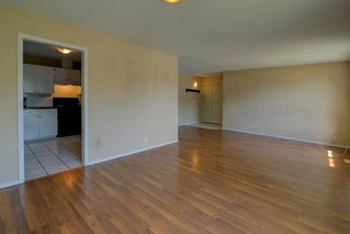 Photo 4: 244 BEDDINGTON Drive NE in Calgary: Beddington Heights House for sale : MLS®# C4195161