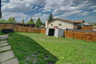Photo 28: 244 BEDDINGTON Drive NE in Calgary: Beddington Heights House for sale : MLS®# C4195161