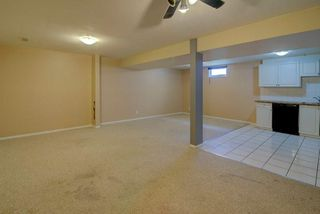 Photo 19: 244 BEDDINGTON Drive NE in Calgary: Beddington Heights House for sale : MLS®# C4195161
