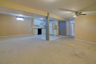 Photo 20: 244 BEDDINGTON Drive NE in Calgary: Beddington Heights House for sale : MLS®# C4195161