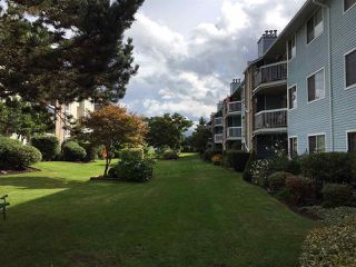 "Photo 4: 307 11510 225 Street in Maple Ridge: East Central Condo for sale in ""RIVERSIDE"" : MLS®# R2307103"