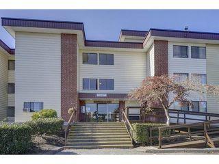 Photo 2: 320 1909 SALTON Road in Abbotsford: Central Abbotsford Condo for sale : MLS®# R2317913