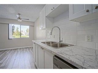 Photo 9: 320 1909 SALTON Road in Abbotsford: Central Abbotsford Condo for sale : MLS®# R2317913