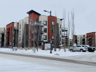 Main Photo: 117 304 AMBLESIDE Link in Edmonton: Zone 56 Condo for sale : MLS®# E4140201