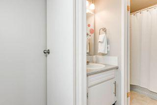 Photo 17: 11719 28 Avenue in Edmonton: Zone 16 House for sale : MLS®# E4152163