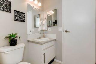 Photo 19: 11719 28 Avenue in Edmonton: Zone 16 House for sale : MLS®# E4152163