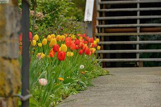 Photo 3: 2315 WARK Street in VICTORIA: Vi Central Park Revenue 4-Plex for sale (Victoria)  : MLS®# 408352