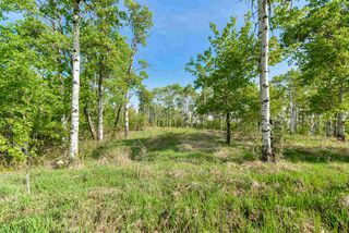 Photo 13: 20 1118 TWP RD 534 Road: Rural Parkland County Rural Land/Vacant Lot for sale : MLS®# E4155396