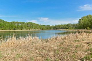 Photo 17: 20 1118 TWP RD 534 Road: Rural Parkland County Rural Land/Vacant Lot for sale : MLS®# E4155396