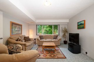 Photo 11: 4576 COVE CLIFF Road in North Vancouver: Deep Cove House for sale : MLS®# R2386100