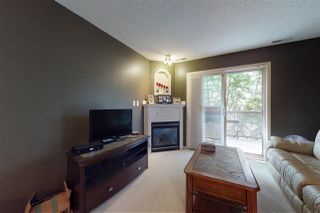 Photo 3: 204 279 SUDER GREENS Drive in Edmonton: Zone 58 Condo for sale : MLS®# E4168253