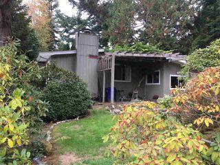 Photo 10: 5169 CHAPMAN Road in Sechelt: Sechelt District House for sale (Sunshine Coast)  : MLS®# R2409855