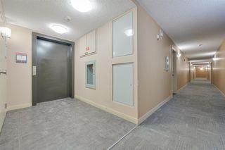 Photo 8:  in Edmonton: Zone 03 Condo for sale : MLS®# E4188689