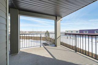 Photo 31:  in Edmonton: Zone 03 Condo for sale : MLS®# E4188689