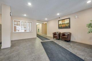 Photo 7:  in Edmonton: Zone 03 Condo for sale : MLS®# E4188689