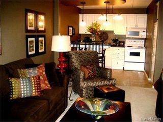 Main Photo: 24 20 Assiniboine Drive in Saskatoon: River Heights Condominium for sale (Saskatoon Area 03)  : MLS®# 439164