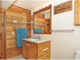 Photo 14: 1315 LAKE SYLVAN Drive SE in CALGARY: Lk Bonavista Downs Residential Detached Single Family for sale (Calgary)  : MLS®# C3558367