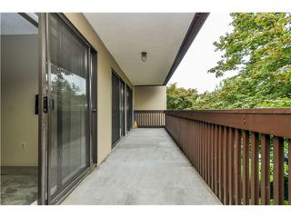 Photo 14: 415 9857 MANCHESTER Drive in Burnaby: Government Road Condo for sale (Burnaby North)  : MLS®# V1053693