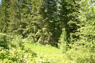 Photo 28: 4827 Goodwin Road in Eagle Bay: Vacant Land for sale : MLS®# 10116745