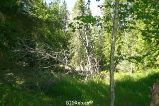 Photo 36: 4827 Goodwin Road in Eagle Bay: Vacant Land for sale : MLS®# 10116745