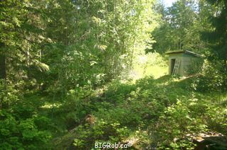 Photo 11: 4827 Goodwin Road in Eagle Bay: Vacant Land for sale : MLS®# 10116745