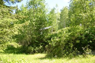 Photo 33: 4827 Goodwin Road in Eagle Bay: Vacant Land for sale : MLS®# 10116745