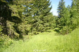 Photo 29: 4827 Goodwin Road in Eagle Bay: Vacant Land for sale : MLS®# 10116745