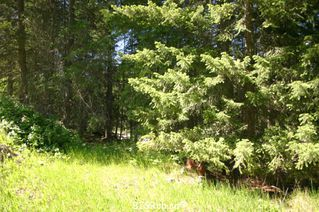 Photo 31: 4827 Goodwin Road in Eagle Bay: Vacant Land for sale : MLS®# 10116745