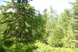 Photo 14: 4827 Goodwin Road in Eagle Bay: Vacant Land for sale : MLS®# 10116745