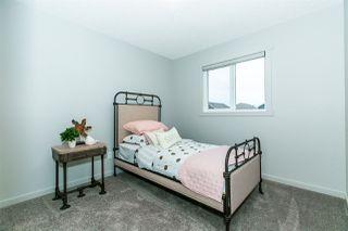 Photo 26: 22328 80 Avenue in Edmonton: Zone 58 House for sale : MLS®# E4177568
