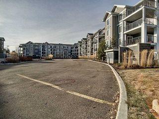 Photo 14: 323 6084 Stanton Drive in Edmonton: Zone 53 Condo for sale : MLS®# E4179124